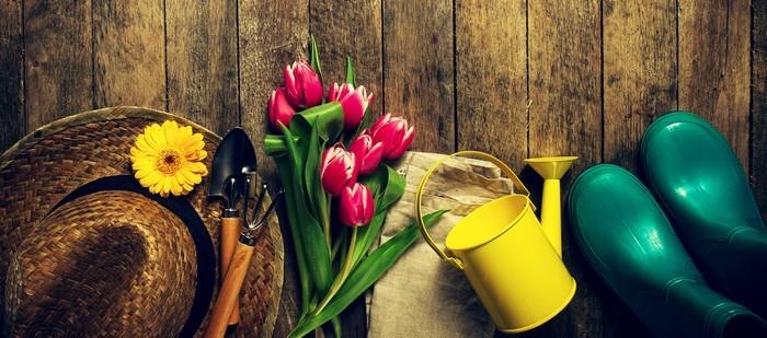 Petits outils jardinage